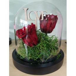 Forever Rose, double red, in glass bell 20cm cover