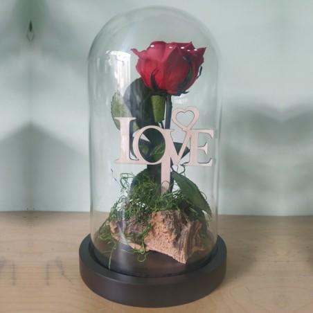 Forever Rose, κόκκινο, σε γυάλινη καμπάνα 25cm