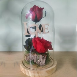 Forever Rose double, red, in glass bell 25cm cover