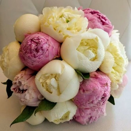 Bridal With Peonies