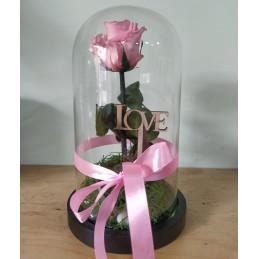 Forever Rose, ρόζ, σε...