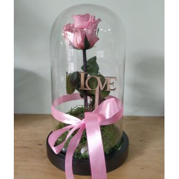 Forever Rose, pink, in a 25cm glass bell